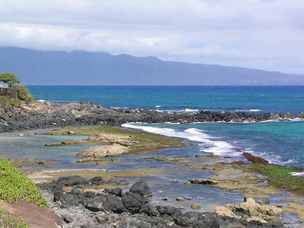 Free things to do on Maui - Expore the tidepools at Mama's Fish House