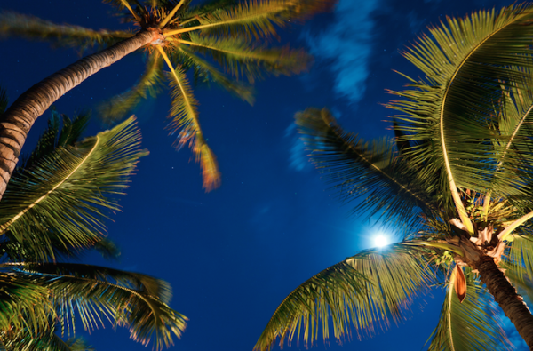 Free things to do on Maui - go star watchingh with a local astronomy club