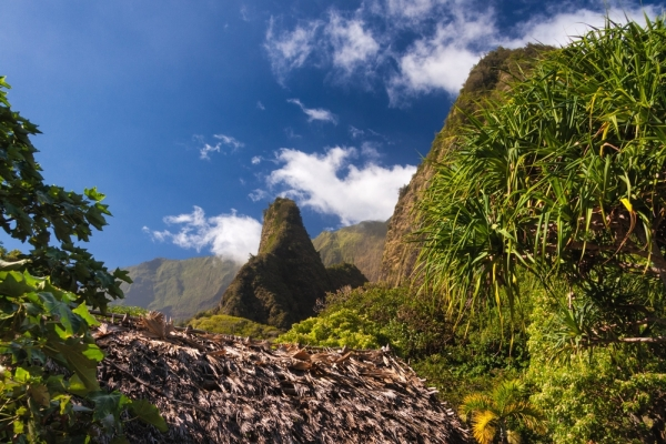 Maui adventure: Hiking the Iao Valley State Park
