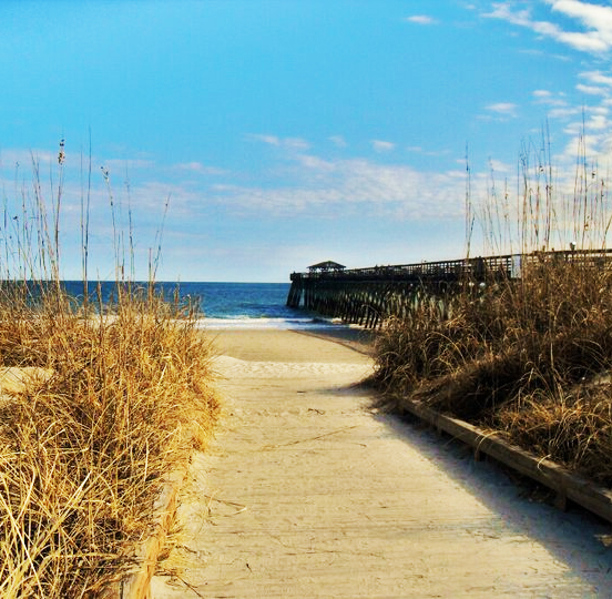 Thing to do: Myrtle Beach State Park