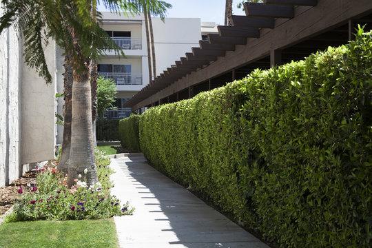 Palm Canyon Resort And Spa Timeshare Resorts Palm